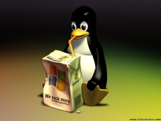Windows Subsystem for Linux is out of beta