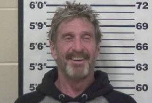 McAfee arrested in US